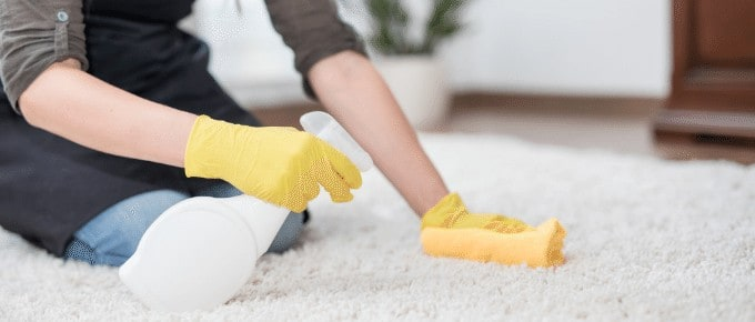 woman cleaning dog urine odor from carpet