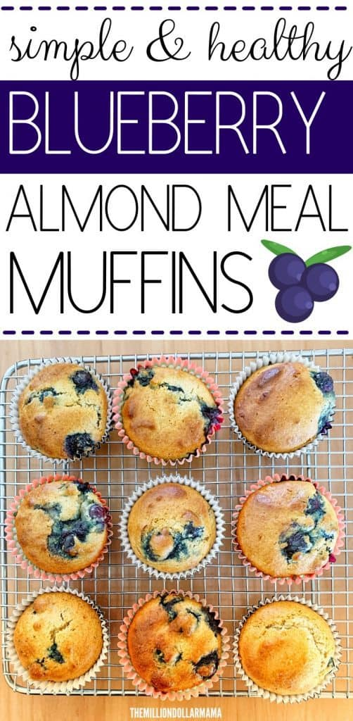 Healthy Flourless Blueberry Muffins Made With Almond Meal - Keto Approved