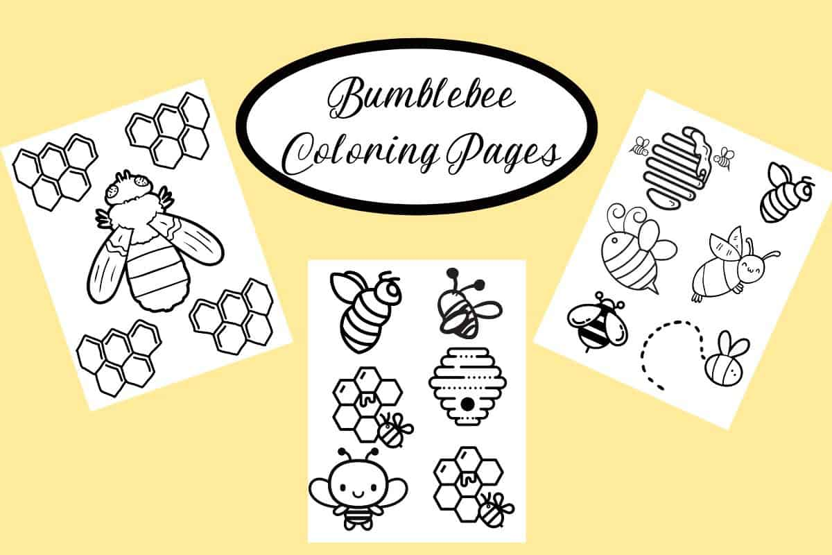 Cute Bumblebee Coloring Pages