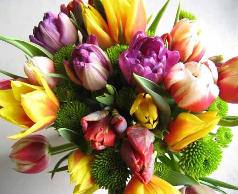 a bouquest of bright colored flowers