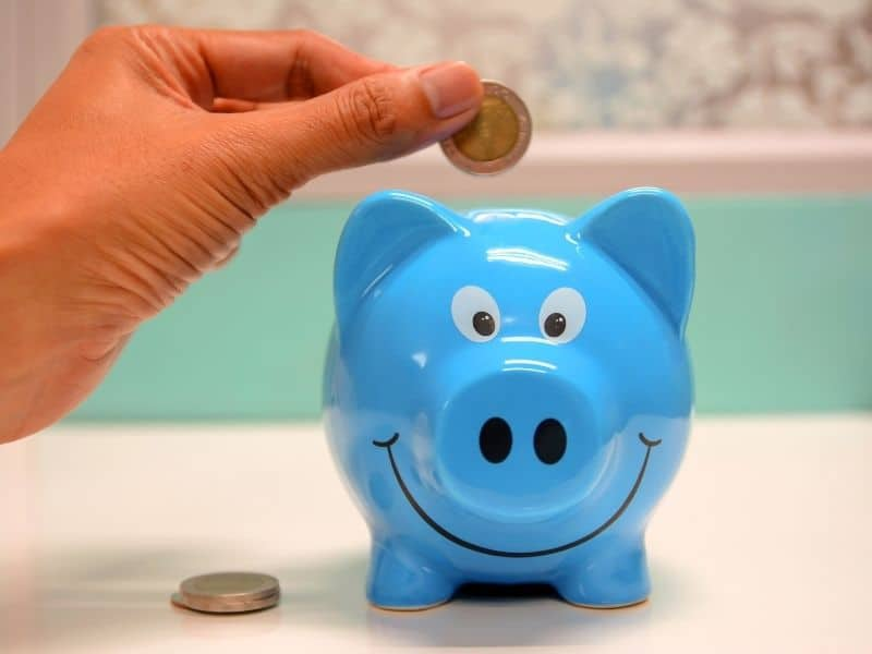a hand putting a coin in a blue piggy bank
