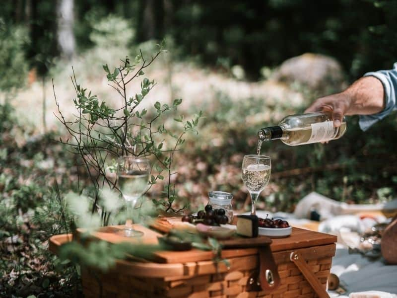 a picnic basket and a glass of wine in nature