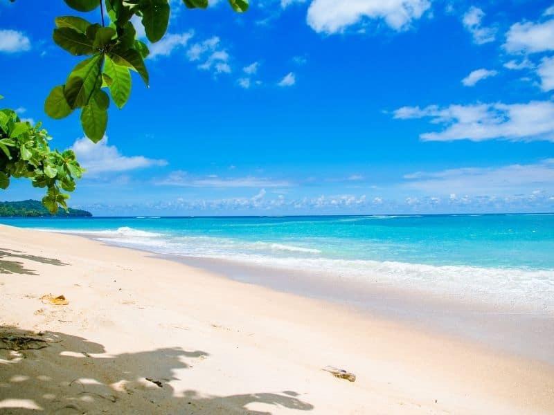 a sunny beach