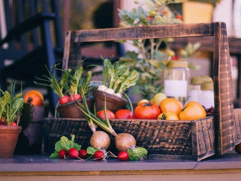 a basket of fresh produce