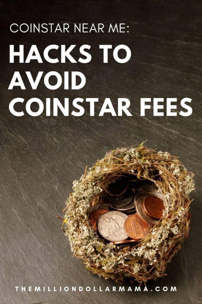 a birds nest with coins inside